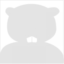 benny beaver silhouette